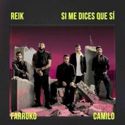Reik, Farruko & Camilo - Si Me DIces Que Si
